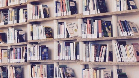 5 Disadvantages Of Reading Too Many Books